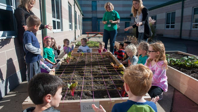 Rice Elementary School students plant swiss chard and radish seeds in the garden at the Marlton school on Friday.