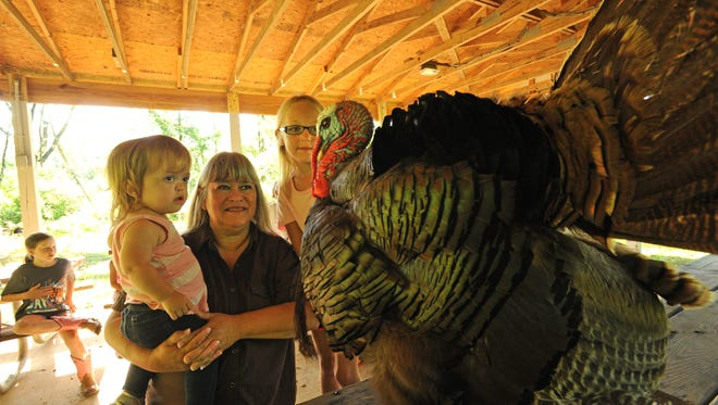 """Kennedy, Linda and Natalie Davlin look at a stuffed turkey at the National Wild Turkey Federation """"Jake's Day for Kids"""" event held at the Kinsey Scout Reserve."""