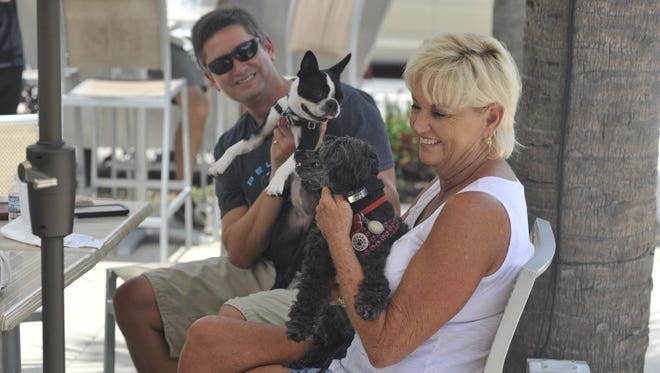 Bridgette Croom, front, pets her yorkie-poodle mix, Hatti Ray, while Robert Drury holds up hi boston terrier Lola.