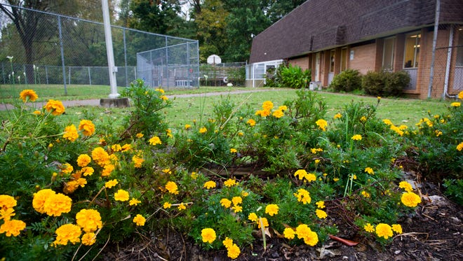 Flowers planted by children sit in a garden near the playground and gym at the Evansville Psychiatric Children's Center, Thursday, Oct. 20, 2016.