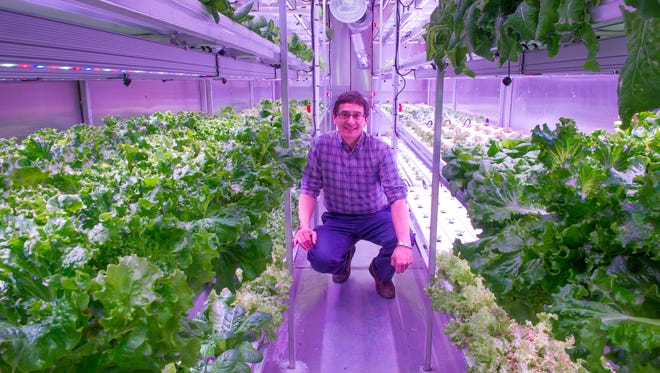Will Anderson, Anderson, president of the Native Kikiktagruk Inupiat Corp., stands inside his Native corporation's new indoor hydroponics farm in Kotzebue, Alaska.