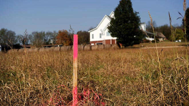 A zinc mining company's survey stake is pictured near Lynn Paxton's 8-acre farm Monday, Nov. 7, 2016, in Strawberry Plains. Paxton and other residents are upset about Nyrstar Tennessee Mines' recent efforts to test for minerals on their property.
