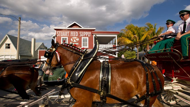 The Budweiser Clydesdales walk a mini-parade route along Southwest Flagler Avenue in downtown Stuart on Feb. 25, 2015.