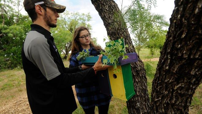 Abilene Christian University senior Eric Dolezalik (left) and Marissa Ballard hang a bird house on a mesquite tree during the grand opening of ACU's new Parker Hill Nature Trail on Saturday, April 22, 2017.