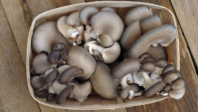 """Mushrooms in your coffee? Food trend lists are saying """"functional mushrooms"""" are going to be showing up in many places in 2018."""