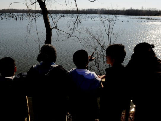 File Photo - Meadow View Elementary students look over