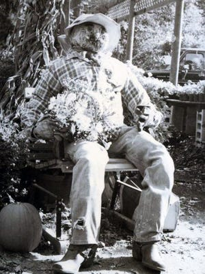 A scarecrow enjoys the autumn sunshine at Osterville in October 1988.