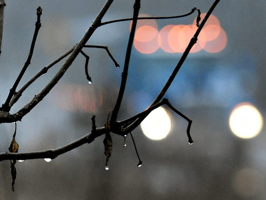 Raindrops linger on tree branches. Rain wiped out nearly the entire local schedule on the area dirt tracks.