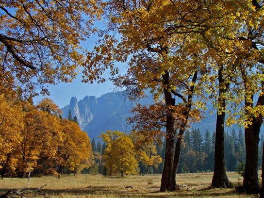 Discover 2015 Yosemite4