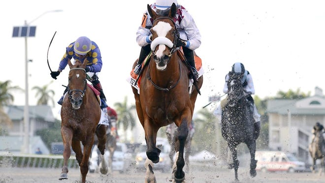 In this March 28 image provided by Gulfstream Park, Tiz the Law, riddren by Manuel Franco, foreground, runs in the Florida Derby in Hallandale Beach, Florida.