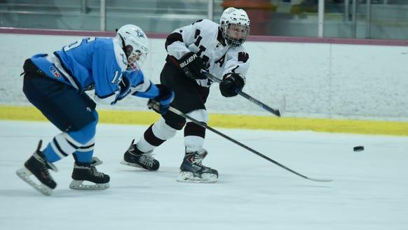 Dean Hulbert leads the Wayne co-op hockey team with six goals through Dec. 13, 2017.