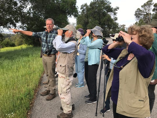 Ventura Audubon Society hosts bird-watching events throughout the region. The group will join the Rancho Ventura Conservation Trust 8-10 a.m. April 28 in the Ventura foothills.