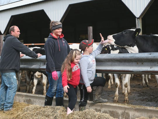 Shane Sauer (from left), his wife, Jennifer, their daughter Brooke and son Cole look over young heifers on their farm near Waterloo. The Sauers operate one of 75 dairy farms in Wisconsin dropped by their milk processor in 2017 over a change of trade police in Canada.