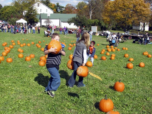 Children can pick out their favorite pumpkins during Renfrew Pumpkin Festival Saturday, Oct.17. Submitted