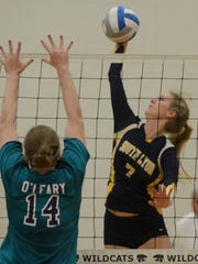 South Lyon's Samantha Halaby (right) tries to put a