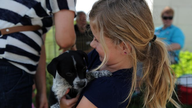 A young girl holds a puppy that was abandoned during a community-wide adoption event in 2016 at the city of Wichita Falls Animal Services Center. Stop by the Pet Rescue Fair from 11 a.m. to 2 p.m. May 27 at the Wichita Falls Public Library. It will feature several pet groups, from P.E.T.S. to the Texas Pit Crew and Animal Services.