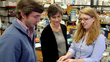 Zac Elmore and Alaina Willet, fifth-year graduate students at Vanderbilt University who are studying cell and developmental biology, work in the lab.