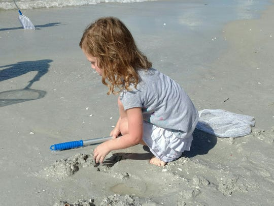 Scarlett Free, 4, of Orlando, sifts through the sand for shells during a tour of Gulfside Beach.