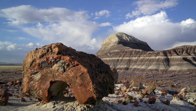 The backcountry of Petrified Forest National Park is a hauntingly beautiful and serenely quiet.