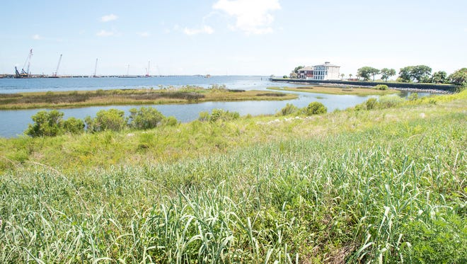 A view of Pensacola Bay from Bayfront Parkway in Pensacola on Thursday, July 12, 2018.  Project GreenShores, a large wetland restoration project, created oyster reefs and restored salt marsh along the shore to protect against erosion and to help wildlife.