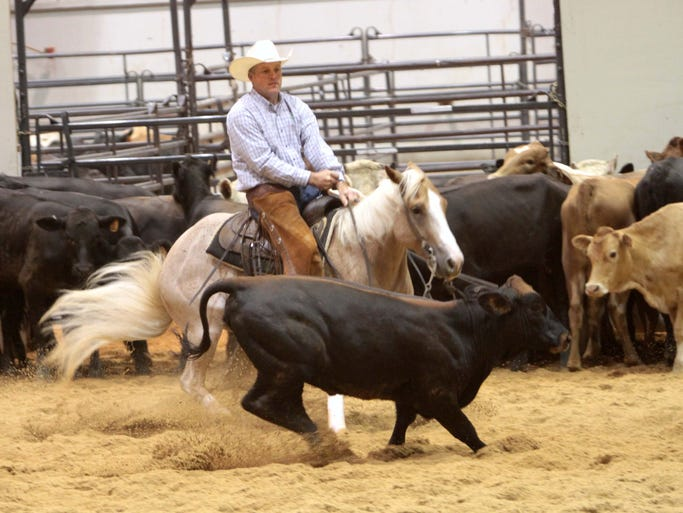 The Acadiana Cutting Horse Association hosts its annual show at the Ike Hamilton Exposition Center in West Monroe this weekend. The three-day show tests the skills of both horse and rider as they cut a single animal from the herd.<p></p>