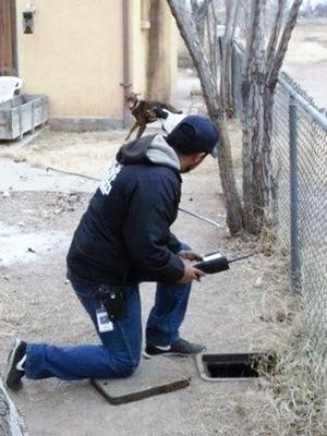 Meter readers face challenges trying to get accurate readings of gas and water meters, including having to fend off dogs in yards. Automated meters will improve safety and accuracy.