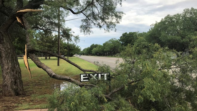 A large limb snapped at Abilene Woman's Club overnight, when storms rolled through Abilene and the Big Country, bringing high winds, some hail and a good amount of rain.