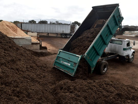 A load of clean mulch is added to pile at Agromin's composting facility in Oxnard recently. The facility makes and sells up to 200 different types of mulch and compost for agricultural and residential customers.