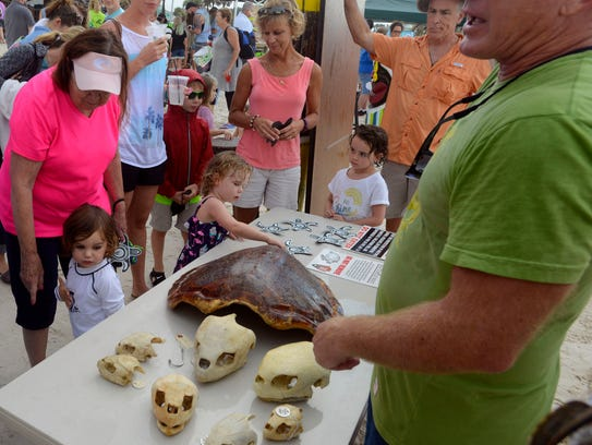 Atendees learn about sea turtles during last year's