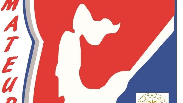 Guam Amateur Baseball Association Wood Bat League logo