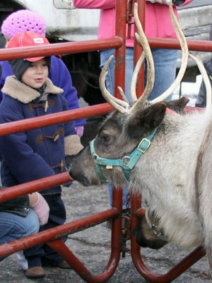 Porter Froetschner, who was visiting from Kansas, got up close and personal with one of Santa's reindeer at Windsor Wonderland in 2011,