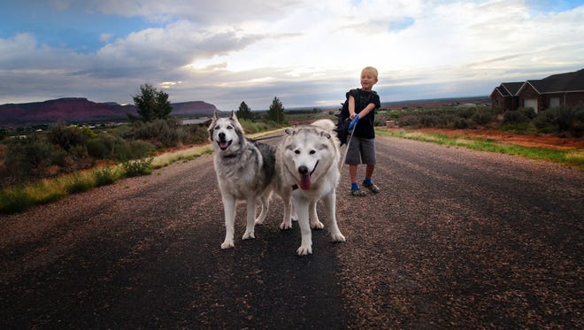 Kindergartner Harry Williams, 7, with his dogs Flora and Gandalf on his way to the bus stop on first day of school in Kanab, Utah. For millions of dogs across the country, summer is gone and so are their best buddies.