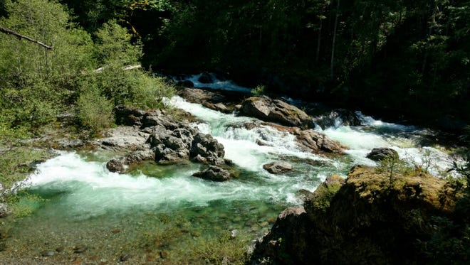 A boy was swept into a river at the North Fork County Park on Sunday.