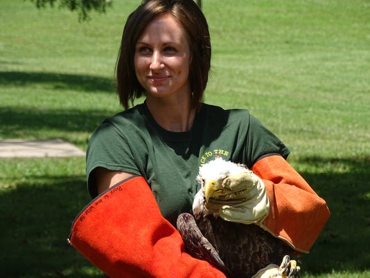 Back to the Wild releases bald eagle