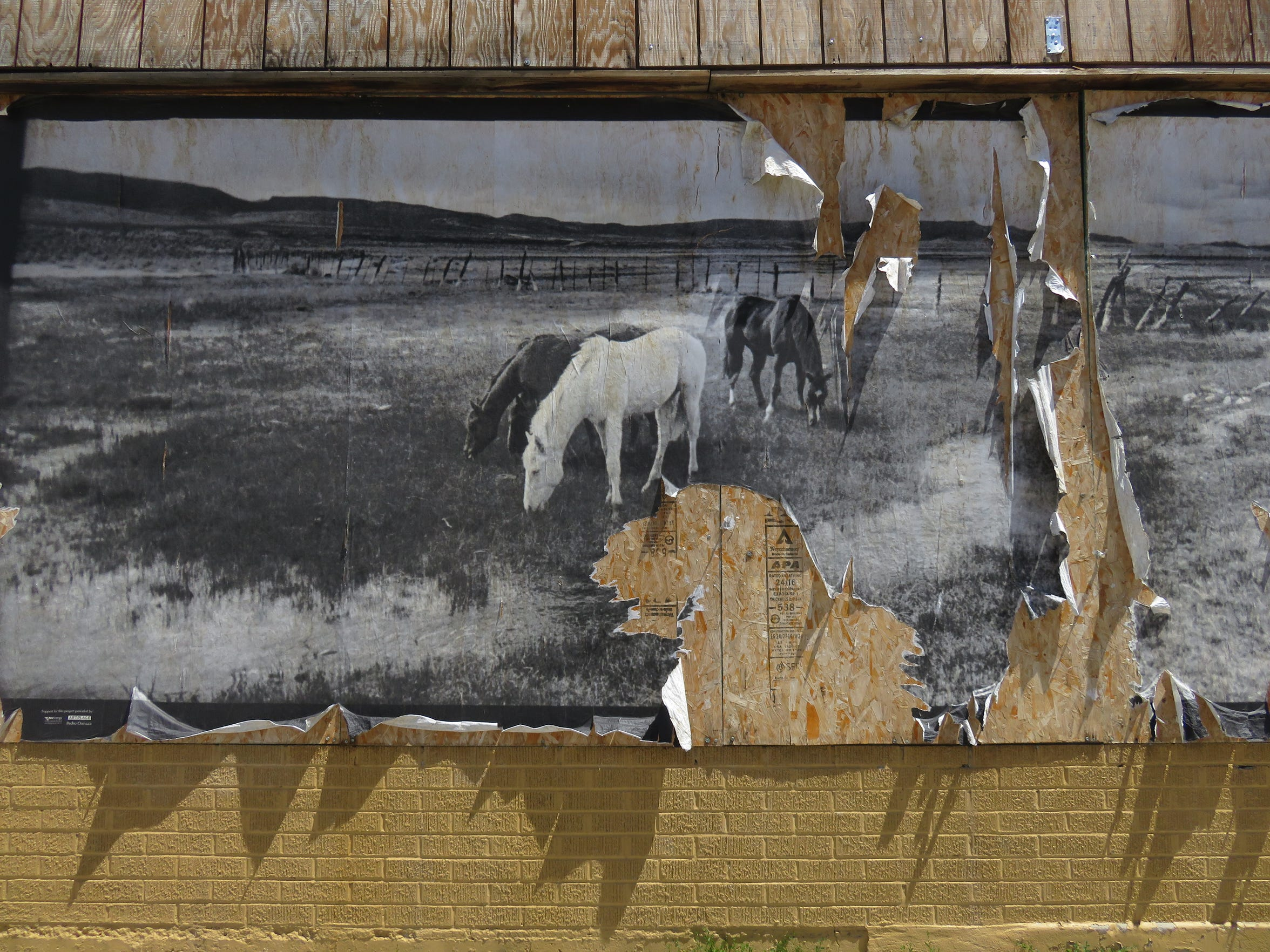 A wheat-pasted photo of horses tears away from a downtown