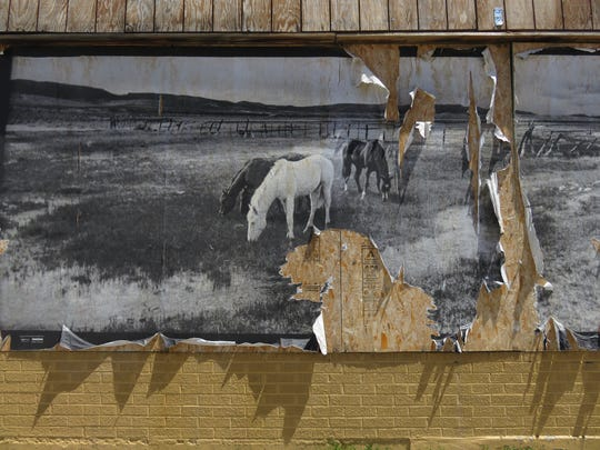 A wheat-pasted photo of horses tears away from a downtown Elko wall in May 2017.