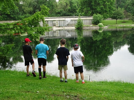Children look at a swan across the pond while attending