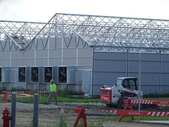 Standard Wellness' medical marijuana cultivation facility