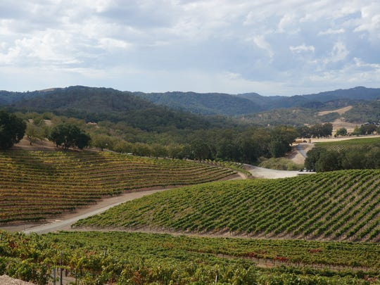 Paso is what Napa used to be - a rich farming region with wide breadths of rolling hills, a laid back vibe and an impressive local food scene.
