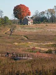 FALL: Longwood's meadow garden shown in October.