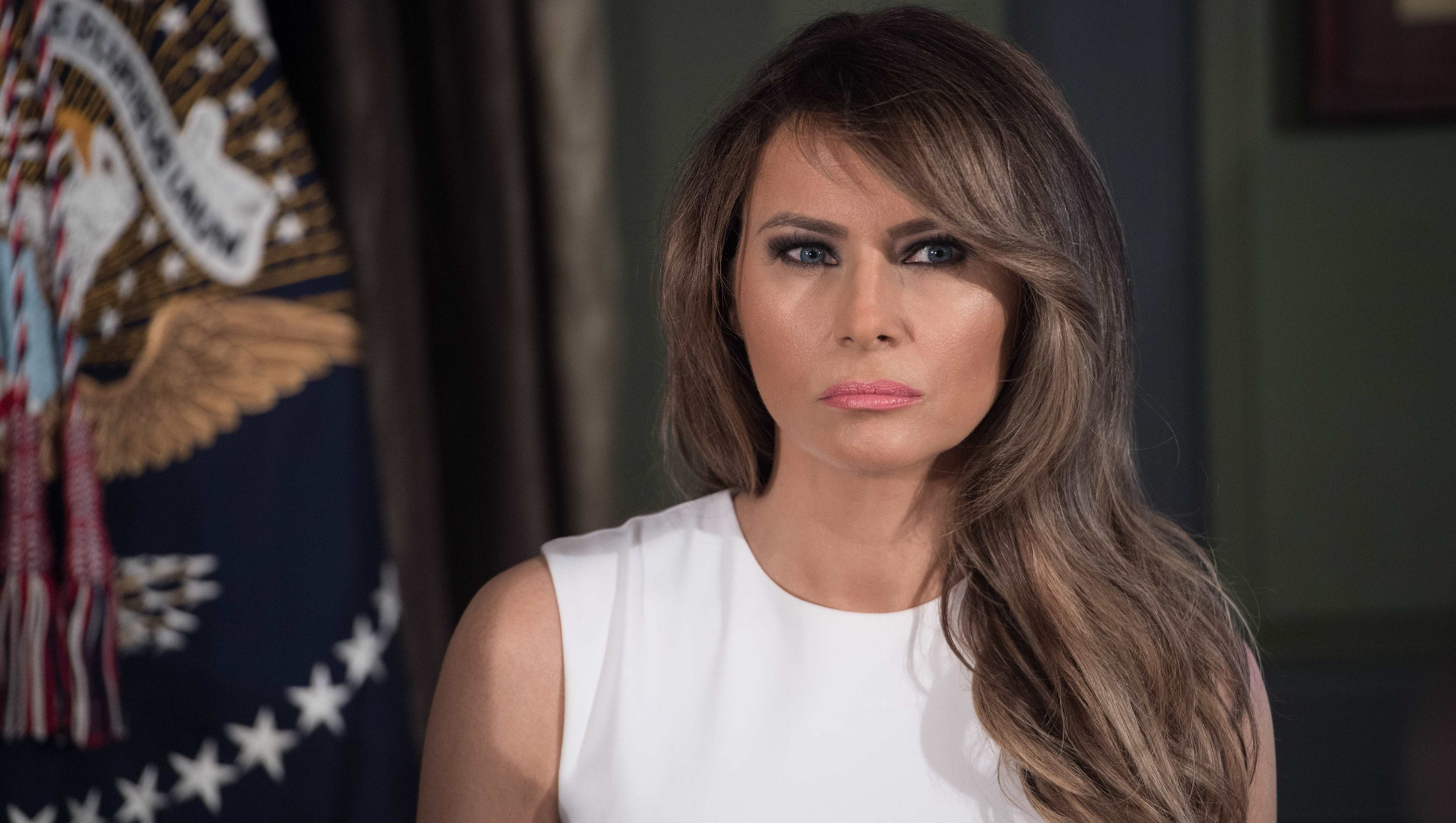 First Lady Melania Trump Style Diary