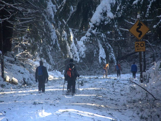 The trip to Proxy Falls Trail during winter requires