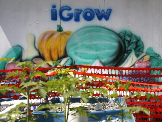 iGrow is a Frenchtown community garden set up to foster