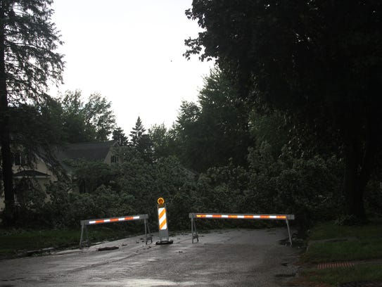 Damage included this tree felled at West Hilton Street
