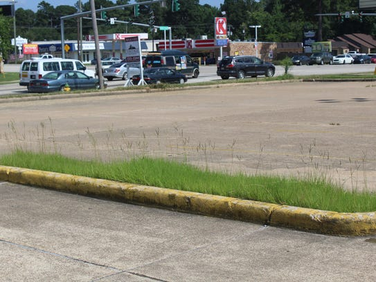 Grass growing happily near the old Rite Aid on Pines