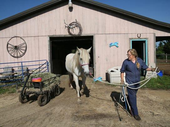 Dee Dee Golberg and her husband, Jeff, run Spirit Horse