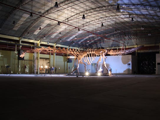 A cast of the skeleton of Patagotitan mounted in the