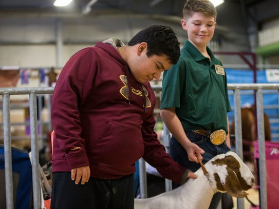 Matthew Martinez, 15 (left), pets Jack Faske's goat