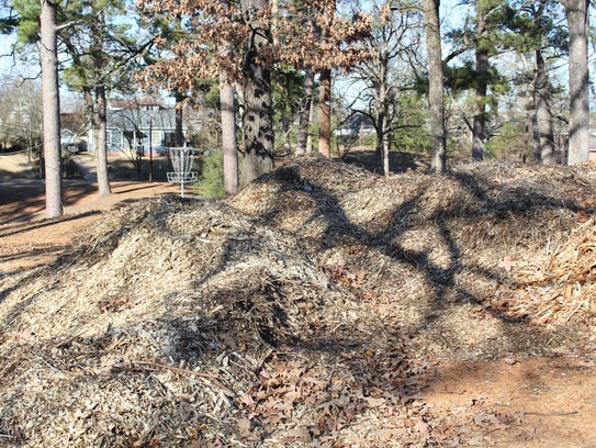 Piles of wood chips gathered and left in Highland Park as part of ongoing erosion control efforts.