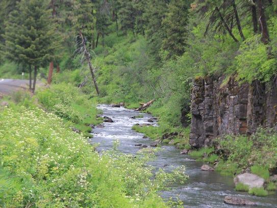 Ukiah-Dale Forest State Scenic Corridor follows the